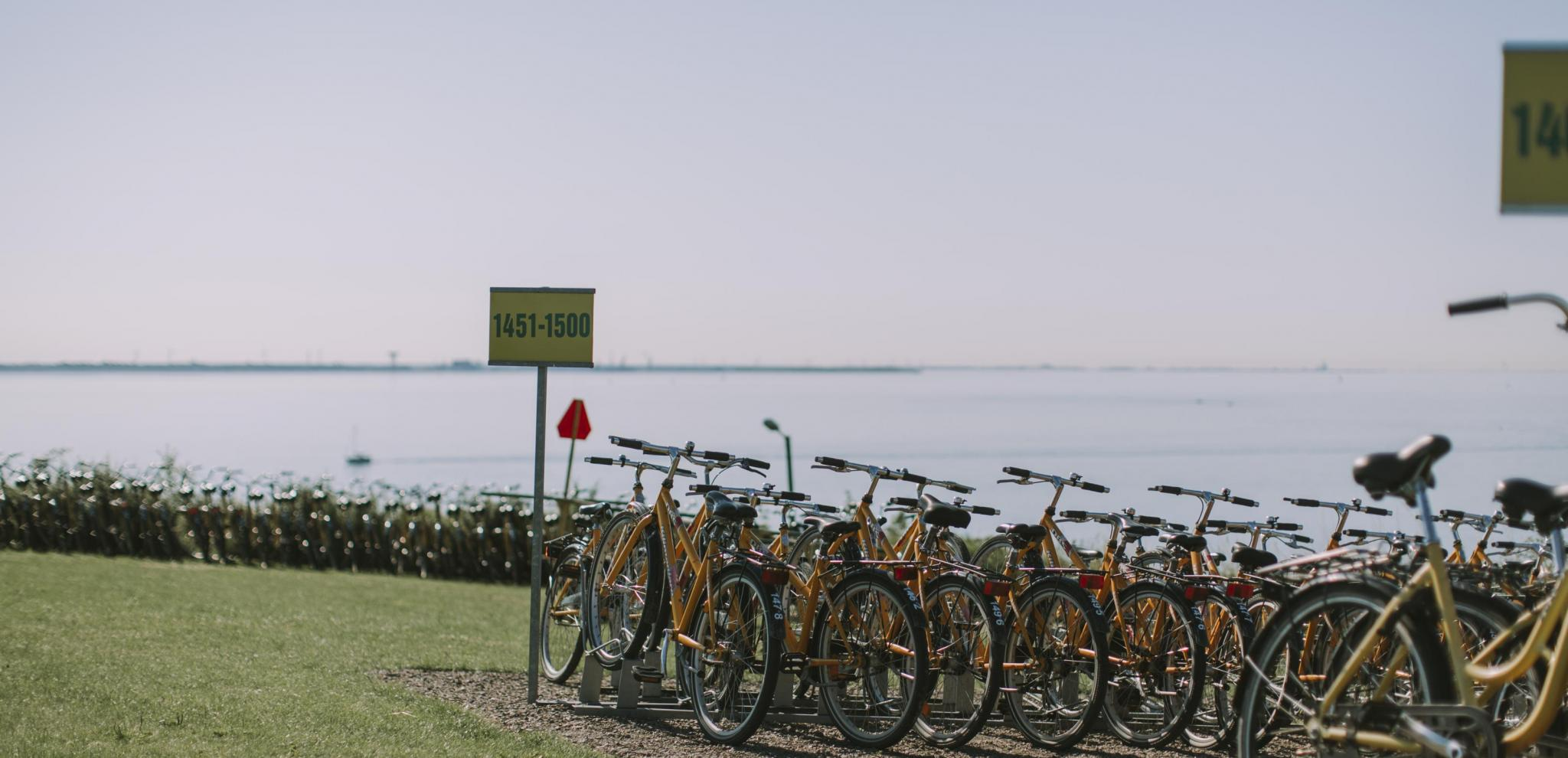 Bikes line facing the horizon on the island of Ven