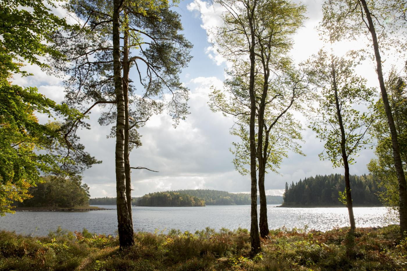 View over Lake Immeln © Mickael Tannus