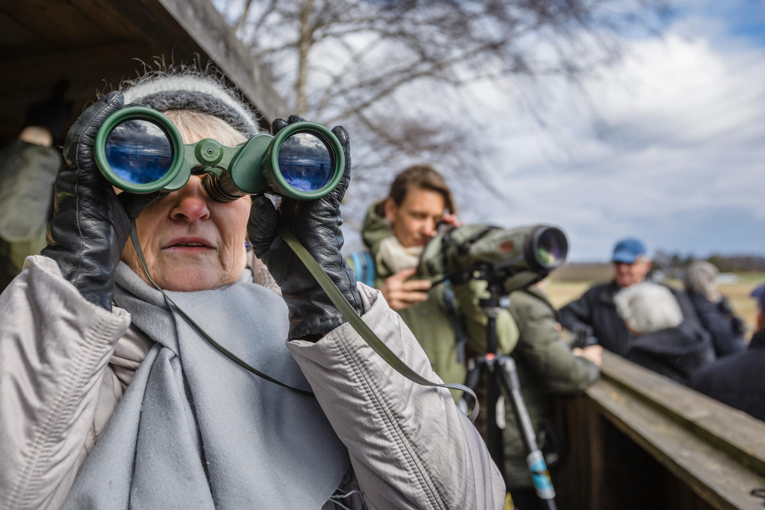 A woman birdwatching