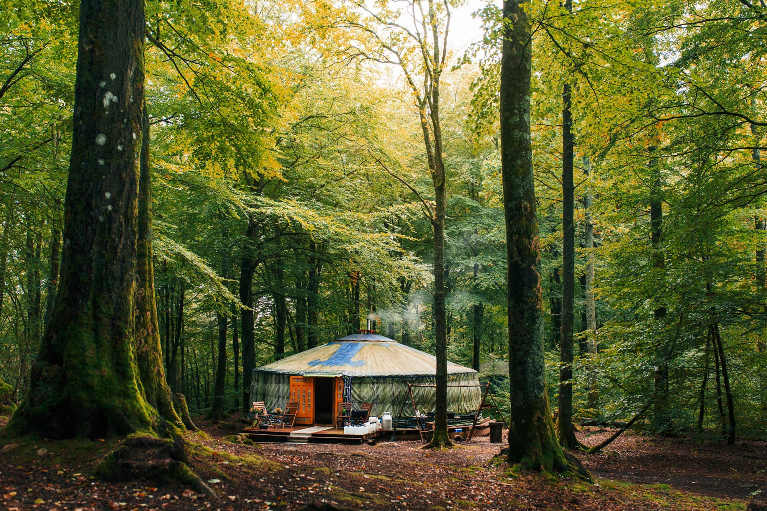 Large round tent with a dining area, located inside a forest.