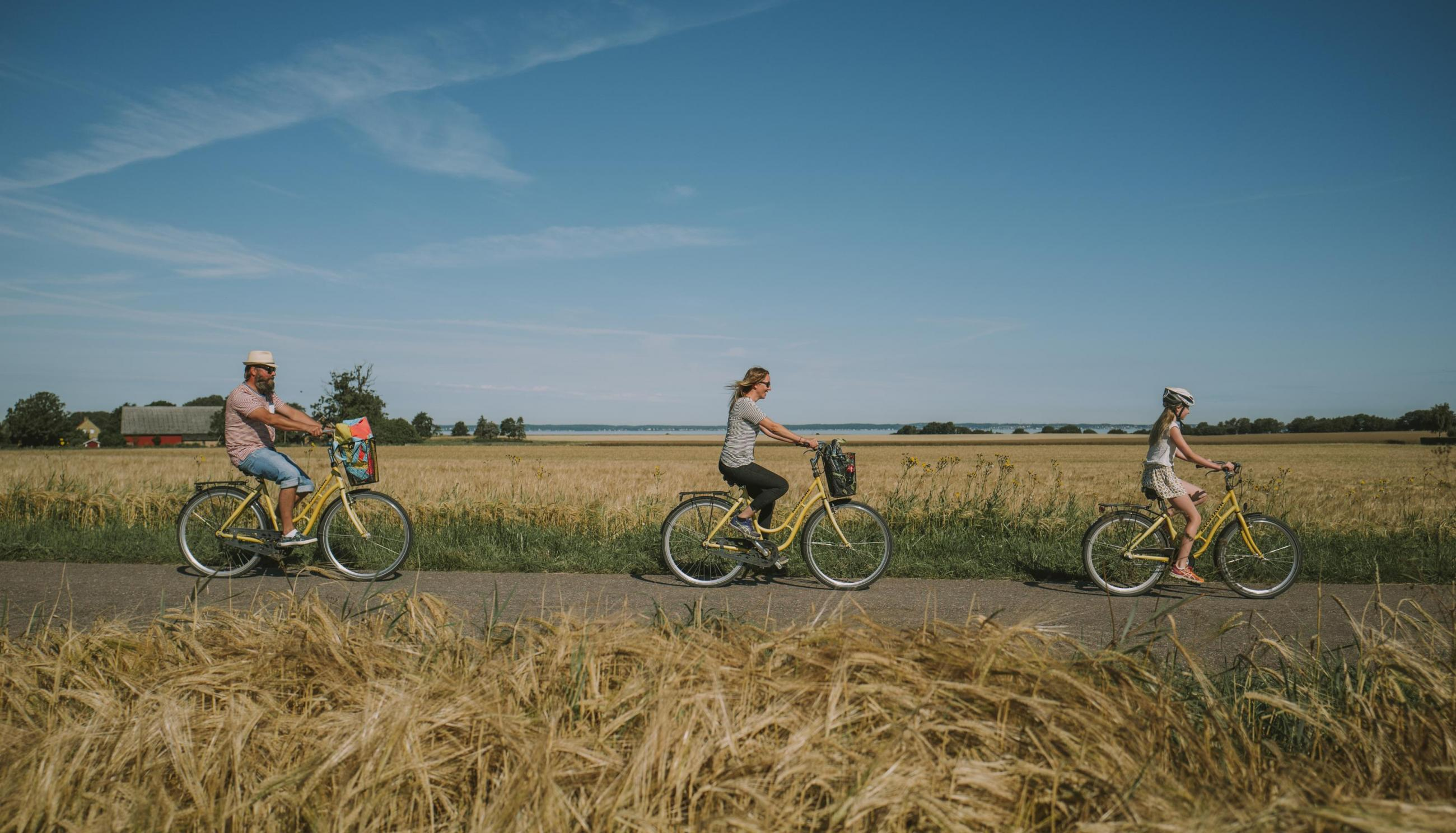 Family biking through the fields on the island of Ven