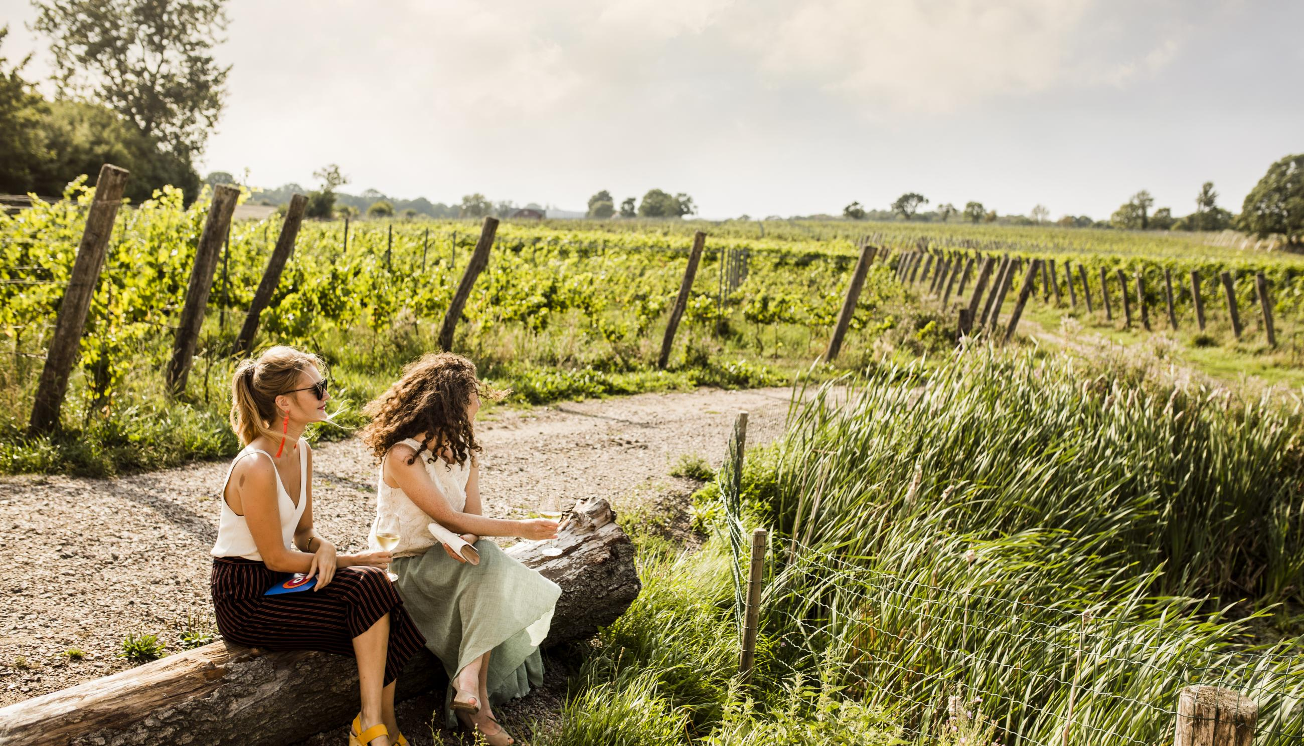 Women sitting on log next to gravel road and a vineyard