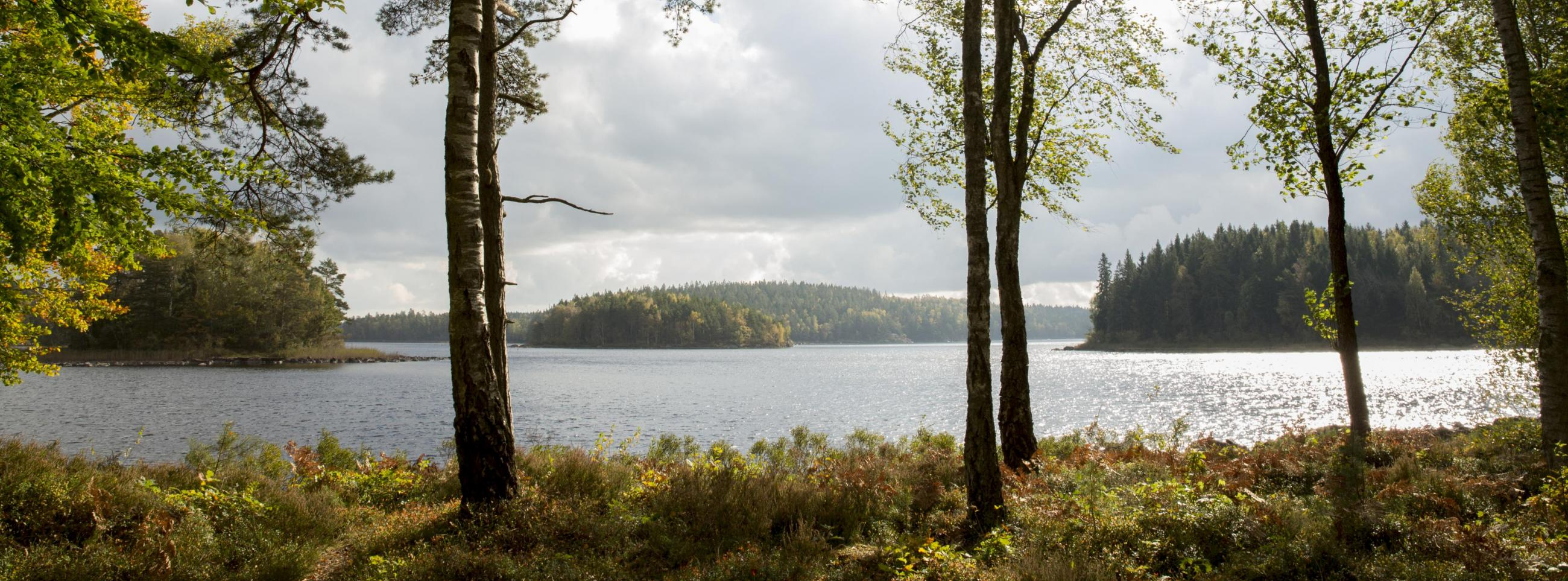 Lake Immeln