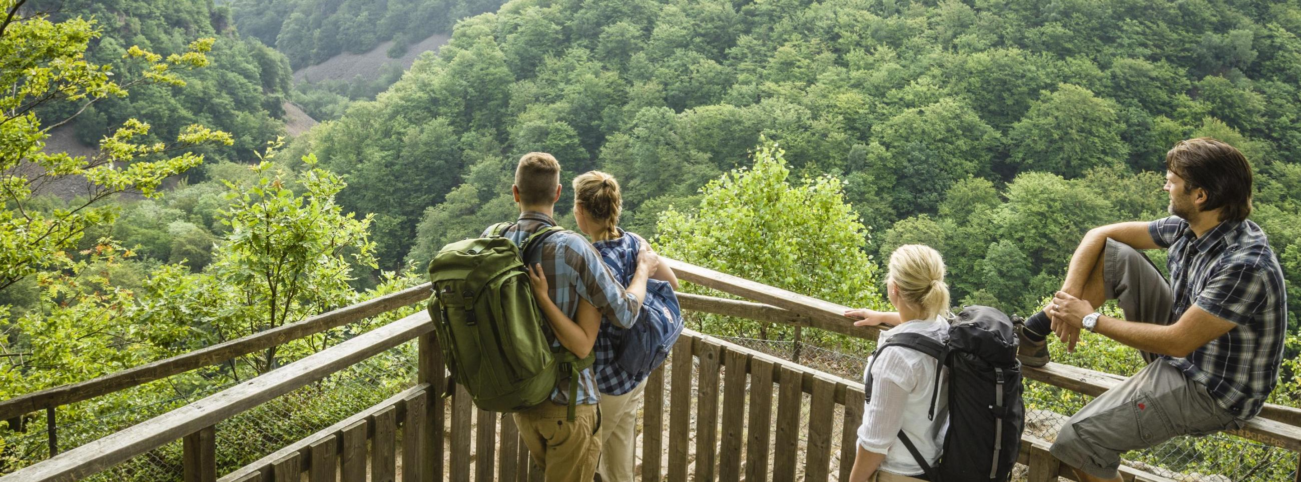 View over Söderåsen National Park