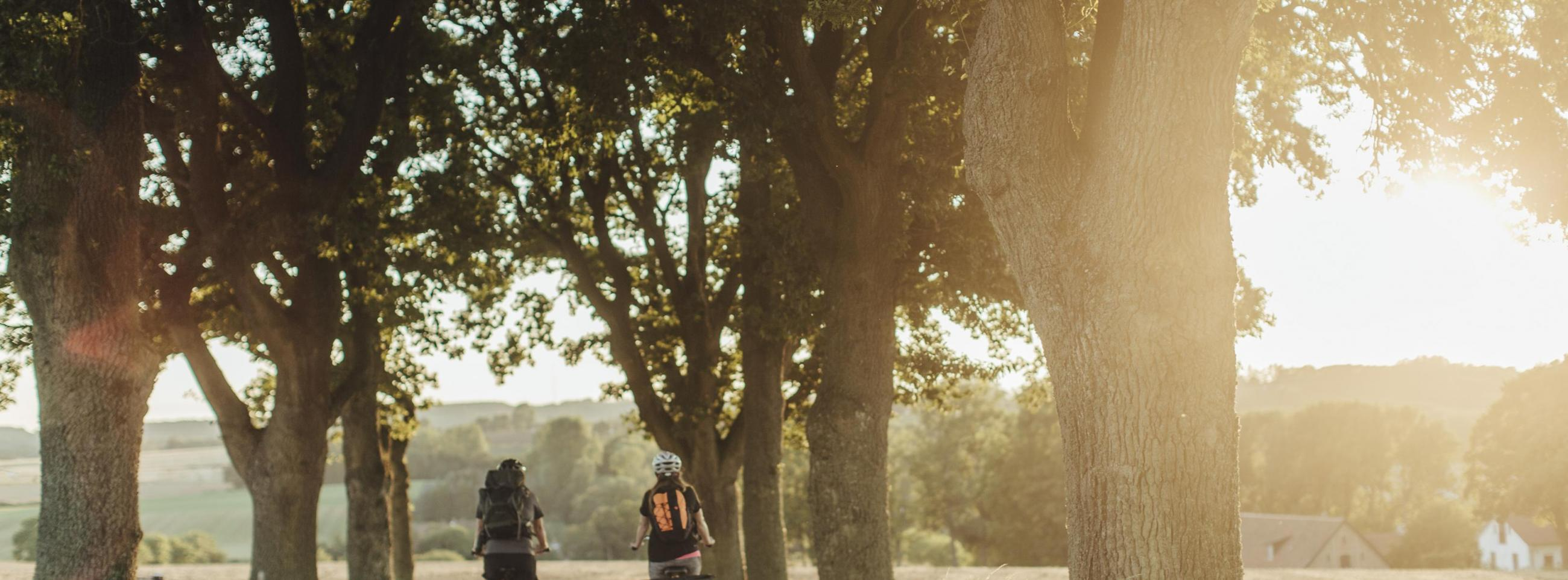 Biking on Sydostleden