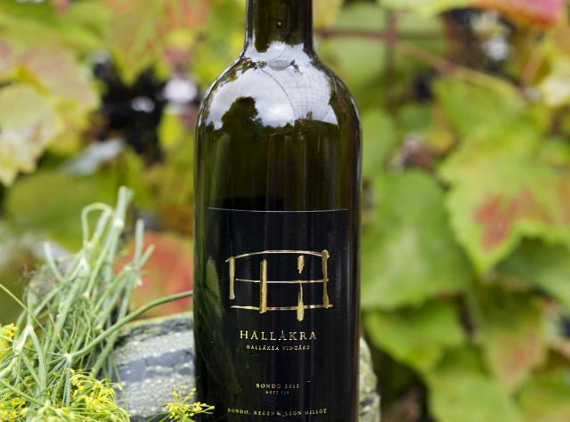 Hällåkra Vineyard
