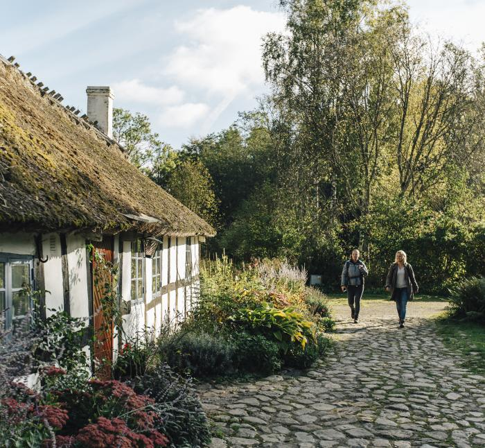 Heritage cottage with a gravel path and surrounding garden furns