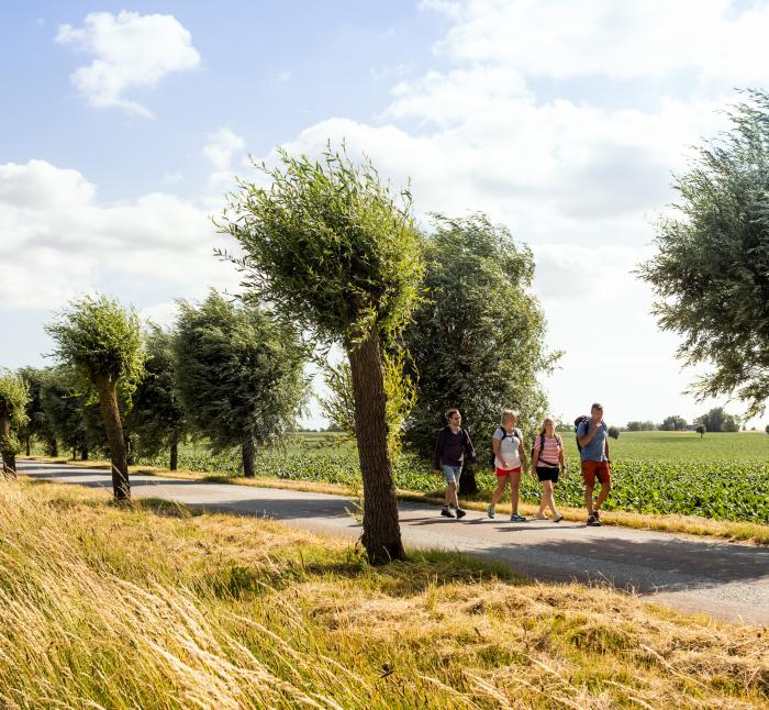 Four people hiking on a country road with fields around
